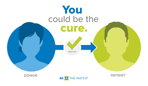 bone marrow or umbilical cord donor matching