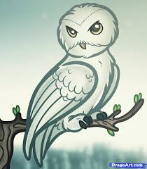 the whole purpose for owls for magicians is to use them to carry