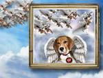 Beagle - Beagles Wallpaper (17008681) - Fanpop fanclubs