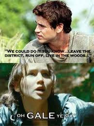 The Hunger Games Memes - the hunger games dirty jokes inappropriate memes pictures