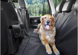 protection siege auto chien protection siege auto chien 535504 amazon couvre si ge et protection