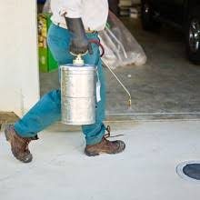 how to evaluate bed bug exterminator cost