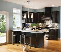 contemporary kitchen design using espresso cabinets with espresso