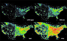 How Do Fireflies Light Up About Light Pollution U0027s Role In Firefly Decline Firefly Org