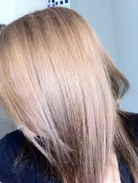 Color Eazy Hair Dye Review Review Nice U0027n Easy Non Permanent Colour Medium Ash Blonde 73 Up