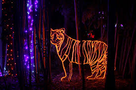 Zoo Lights Schedule by Zoolights At The Fresno Chaffee Zoo Kings River Life Magazine