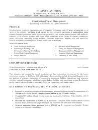 sales manager resume sle doc 28 images senior sales executive