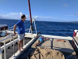 Bean Bag Chairs For Boats Hula Excursions Lahaina Hi Top Tips Before You Go With