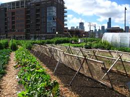 wiki 4 global changes from growing transport to smart urban agriculture wikipedia
