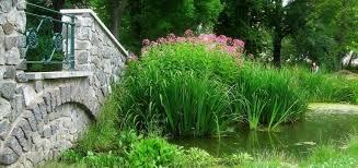 feng shui giardino come creare un giardino come realizzare un giardino con i nani