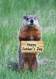 groundhog day cards best 25 happy fathers day ideas on happy