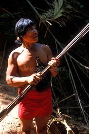 Awa by Native Indian Awa Guaja Of Brazil Editorial Photography Image