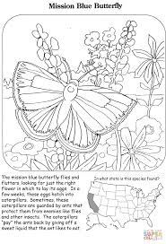 mission blue butterfly coloring page free printable coloring pages