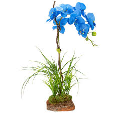 blue orchids cyma orchids vintage blooms artificial blue orchid