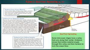 fcat 2 0 science review mrs bloch u2013 coral gables prep ppt download