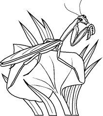 bug coloring pages funycoloring