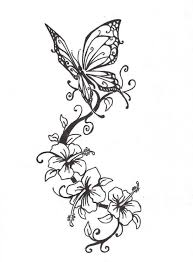 vine butterfly pencil and in color vine butterfly