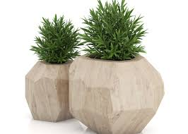 plant planters for plants pleasurable water planters for indoor