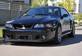 2004 Mustang Cobra Black 2003 25th Anniversary Mustang