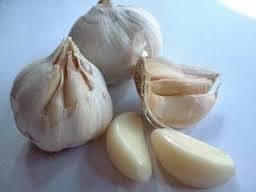 khasiat bawang putih untuk laki laki rahasia kuat dan tahan lama