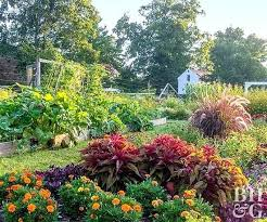 vegetable gardens pictures u2013 exhort me
