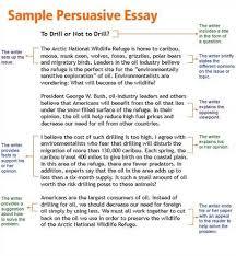 argumentative persuasive essay examples 21 sample of for argument