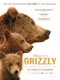 Animal Planet Documentary Grizzly Bears Full Documentaries - documentaries