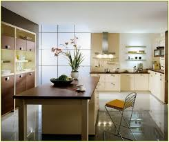 Small Galley Kitchen Design Small Galley Kitchen Remodel Home Design Ideas