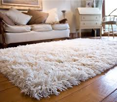 White Living Room Rug by Living Room White Shag Rug With Brown Wooden Floor And White Rug