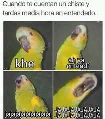 imagenes graciosas y zarpadas top memes de chiste en español memedroid
