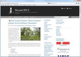 website homepage design website development beyond rice mito studios mito studios
