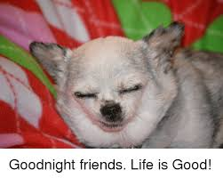 Good Friends Meme - goodnight friends life is good friends meme on ballmemes com