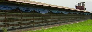 Side Curtains Poultry Curtain Winch Side Curtain For Poultry