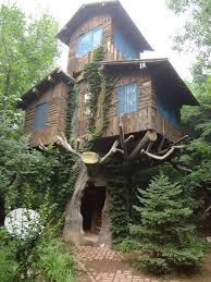 3 story tree house with stairs carved in the trunk interestingasfuck