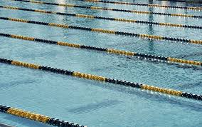 torch calories with this simple 30 minute swim workout myfitnesspal