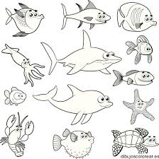 imagenes animales acuaticos para colorear animales marinos para colorear imprimir imagui morze pinterest