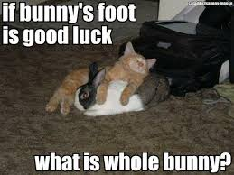 Funny Good Luck Memes - funny good luck meme 28 images 21 most trending good luck images