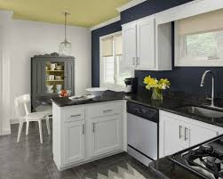 White Cabinets With Blue Walls Kitchen White Cabinets Blue Walls Trekkerboy
