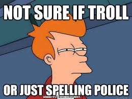 Spelling Police Meme - not sure if troll or just spelling police seriously it s the
