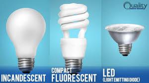 the raleigh home inspector asks do the light bulbs convey