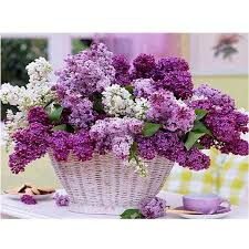 compare prices on floral painting designs online shopping buy low