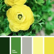 Golden Color Shades Shades Of Golden Color Color Palette Ideas