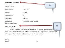 Sample Java Resumes by Declaration In Resume Format Resume Format