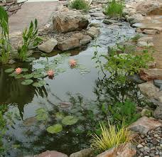 garden stream ideas price list biz