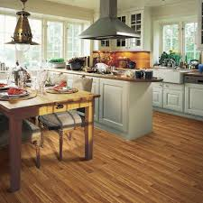 Traditional Kitchen Design Ideas Flooring Traditional Kitchen Design With Paint Kitchen Cabinets