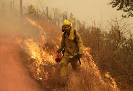 Wildfire Viewer by California Wildfire Deaths Reach 40 Police Have 300 Missing