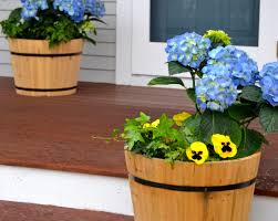 creating quick new home curb appeal