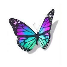 blue 3d butterfly design butterfly designs