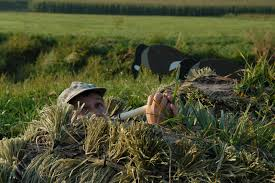 Goose Layout Blind 5 Best Ways To Conceal Your Layout Blind Wildfowl