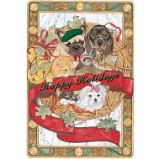 cat with australian shepherd dog with cat groups christmas holiday dog cat combo shop by pet